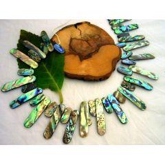Paua-Muschel (Seeopal), Strang