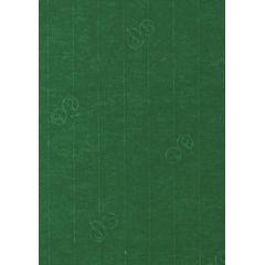 Karte / Kuvert C6, B6, A4, A5, Din lang Farbe: racing grün