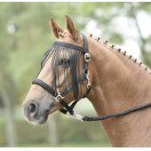 Fliegenkordelband Visby, Pony