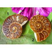 Ammonit (Madagaskar), Anhänger mit Silberöse