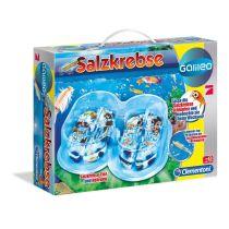 Galileo Salzkrebse Basis-Set