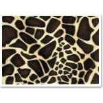 Plüschkarton Giraffe