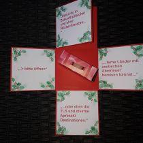 Explosionsbox - Weihnachten Ilex Tannenzweig individuell