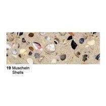 Motiv Fotokarton  300g/m² Muscheln