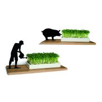 Originelle Kresseschale mit Schattenfigur Gärtner oder Schwein