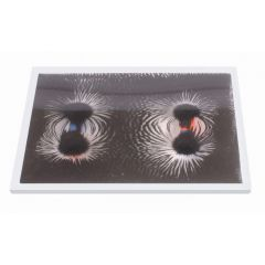 Magnetisches Feld Demonstrationsmodell 225 x 130 x 15 mm