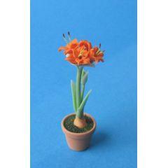 Amaryllis orange im Blumentopf Puppenhaus Dekoration Miniatur 1:12