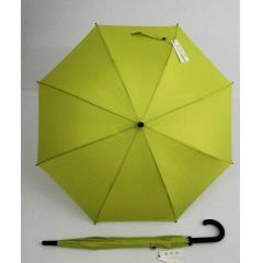 Esprit grüner Automatik Regenschirm Stockschirm apfel grün