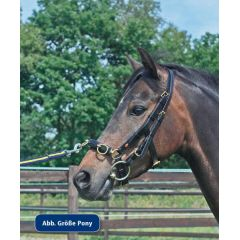 Kappzaum Professional solibel Pony