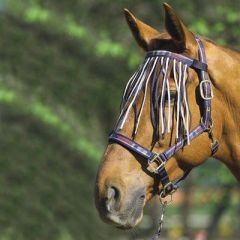 Halfter-Set FASHION, Pony