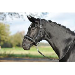 Halfter Silverhorse mit Soft-Fleece