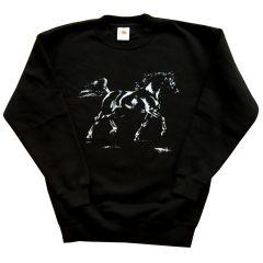 Sweatshirt Arabischer Rapphengst Kids Gr. 128