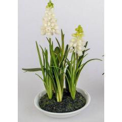 formano Deko Muscari gelb im weißen Keramiktöpfchen, 18 cm