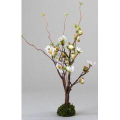 formano Kirschblüte auf Moossockel, weiß, 38 cm
