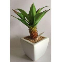 GILDE Deko-Kaktus Sukkulente im Keramiktopf, 12 cm