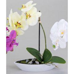 Orchidee im Porzellanschiffchen, gelb, 28 cm