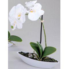 Orchidee im Porzellanschiffchen, weiß, 28 cm