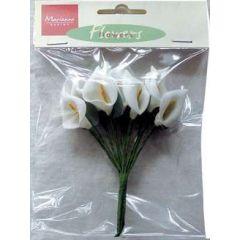 Flowers Callas JU 0869