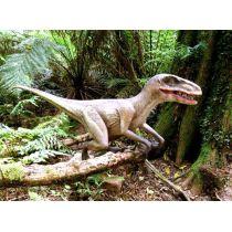 Effekt-Postkarte 3D: Dinosaurier