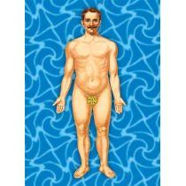 "Postkarte mit Wackelbild ""Anatomie"""