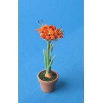 Amaryllis orange Blumentopf Puppenhaus Dekoration Miniatur 1:12