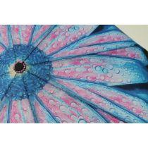 Susino geblümter Regenschirm Automatik Taschenschirm Damen 013