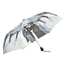 """Von Lilienfeld Taschenschirm Gustave Caillebotte: """"Paris im Regen""""  Damenschirm"""