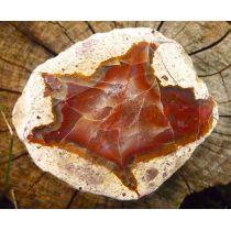 Amulettstein Sternachat A Anschliff, Australien