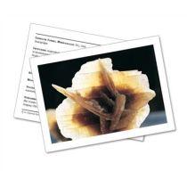 Infokarte / Mineralienkarte Sandrose / Gips