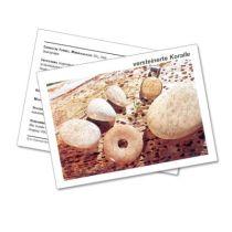 Infokarte / Mineralienkarte versteinerte Koralle
