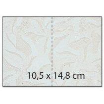 Umschlag C6 / Karte / Karton A4 Rechteck  starfish weiss