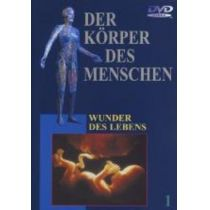 Der Körper des Menschen 1-10 - Paket [10 DVDs]