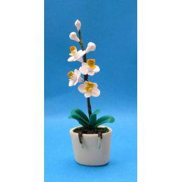 Weisse Orchidee im Blumentopf Puppenhaus Miniatur 1:12