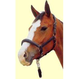 Lederhalfter Horse