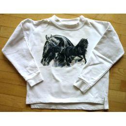 Sweatshirt Friesen Collage, Gr. 128, 2. Wahl