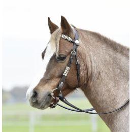 Western-Showzaum / Kopfstück Texas, Pony
