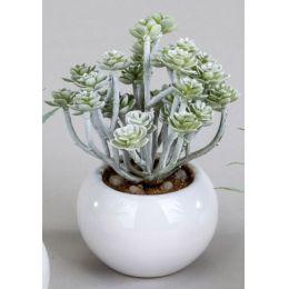 formano Deko-Kaktus im Keramiktopf, 16 cm