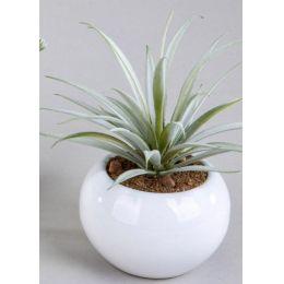formano Deko Kaktus im Kugeltopf, 16 cm