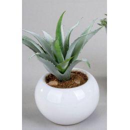 formano Deko-Kaktus im weißen Keramiktopf, 16 cm