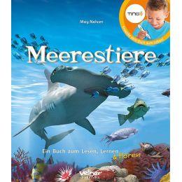 Meerestiere – Ein Buch zum Lesen, Lernen & Hören