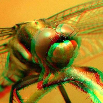 3D Brille Rot/ Grün | 10-270.RGB / EAN:4260489740286