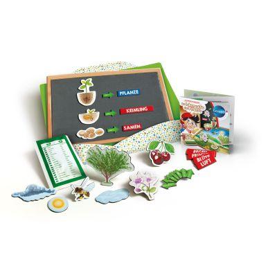 Galileo Der Lebenszyklus einer Pflanze | 043-59067.4 / EAN:8005125590674