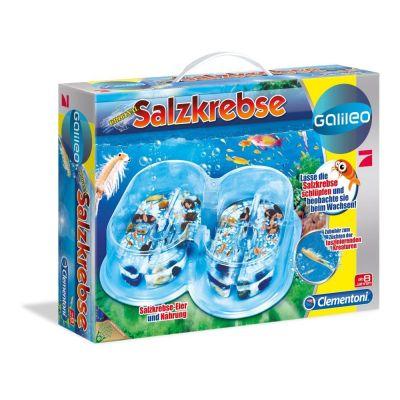 Galileo Salzkrebse Basis-Set   043-69320.7 / EAN:8005125693207