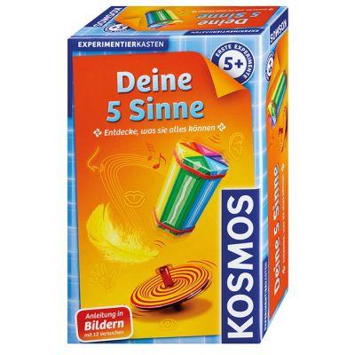 KOSMOS Deine 5 Sinne | 450-602437 / EAN:4002051602437