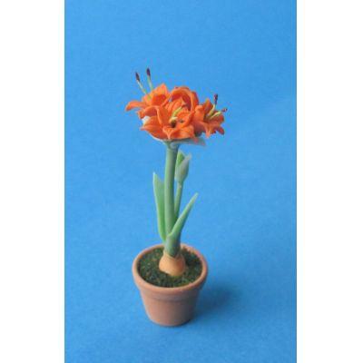 Amaryllis orange Blumentopf Puppenhaus Dekoration Miniatur 1:12   c75761 / EAN:3597837576107