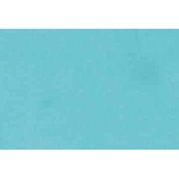 2 Verzierwachsplatten, 200x100x0,5 mm minzgrün | 162630/0069