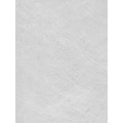 Papiervlies hellblau mit Silberfaser | 3980326