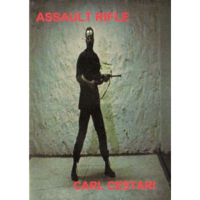 Carl Cestari's Assault Rifle | CCARDVD
