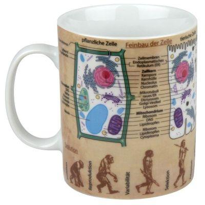 Becher Wissensbecher gro Biologie Kaffeetasse Tasse Kaffee Teetasse Porzellan Pott Henkelbecher bunt | 3825 / EAN:4028145060433