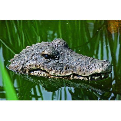 Schwimmtier Krokodil Gartendekoration Badespielzeug Scherzartikel Wassertier | 3013 / EAN:4020606729972